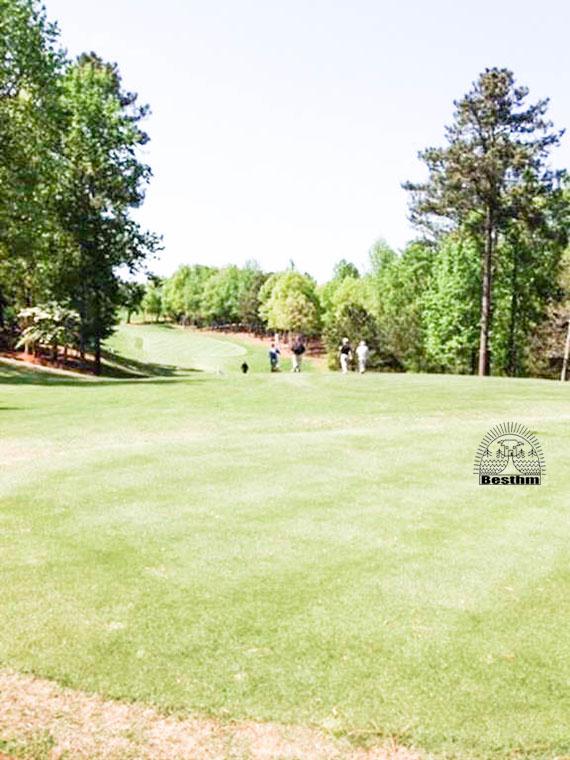 golf lot.jpg