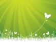 ist1_5934832-garden-background-green.jpg