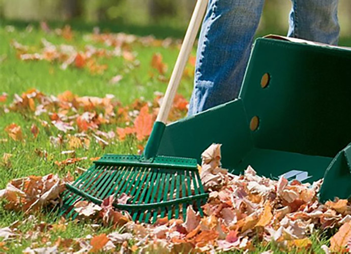 Lawn care tips for winter and fall - Winter lawn care advice ...